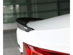 F22/23 carbon rear spoiler